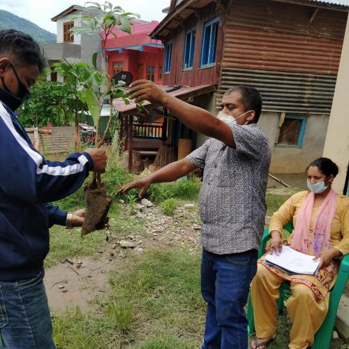 Sambodhan-team-member-distributing-plants-to-the-farmers-as-well-as-following-strict-rules-of-Covid-19-by-wearing-mask-and-maintaining-distance